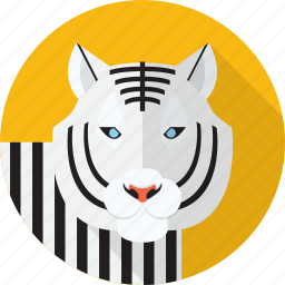 animal, jungle, tiger, white, wild icon