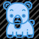 bear, mammal, wildlife, zoo, animal