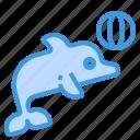 dolphin, sea, mammals, animal, aquatic