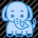 elephant, animal, wild, wildlife, zoo