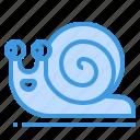 snail, animal, wildlife, slow