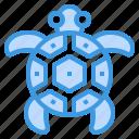 turtle, ocean, animal, sea, marine