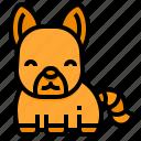 fox, wild, wildlife, animal, zoo