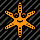starfish, star, aquatic, animal, sea