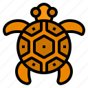 turtle, ocean, animal, sea, marine