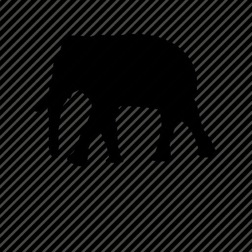 animal, elephant, fauna, safari, wildlife icon