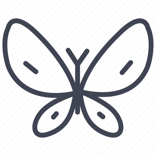 animal, butterfly, ecology, insect, nature icon