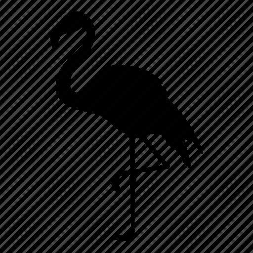 animal, bird, flamingo, flamingos, nature, pink, silhouette icon