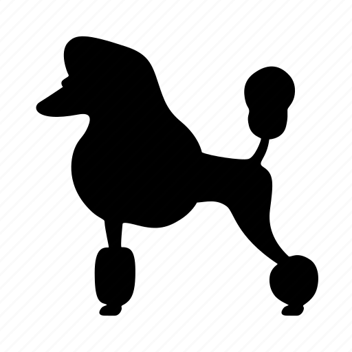 animal, dog, doggy, hair style, pet, poodle, silhouette icon