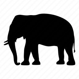 africa, animal, elephant, india, safari, silhouette, wild icon