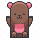bear, animal, nature, teddy, zoo