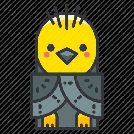 animal, animals, bird, ecology, nature icon