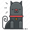 animal, animals, cat, cute, kitten, pet icon