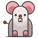mouse, animal, animals, pet, rodent