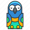 animal, bird, nature, parrot, pet icon