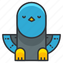 animal, bird, dove, nature, pidgeon, pigeon icon