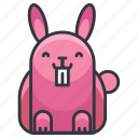 animal, bunny, easter, hare, rabbit icon