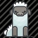 sheep, animal, animals, lamb, nature, wool