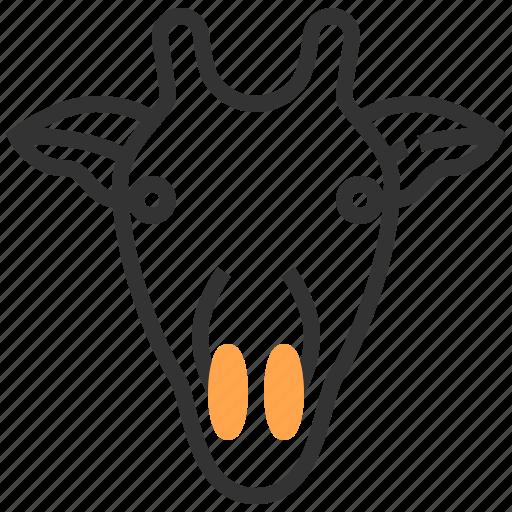 animal, face, giraffe, head icon