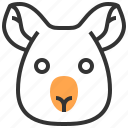 animal, bear, face, head, koala icon