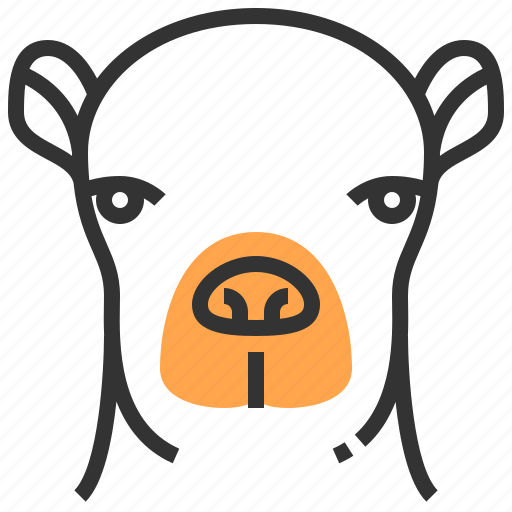 animal, camel, face, head icon