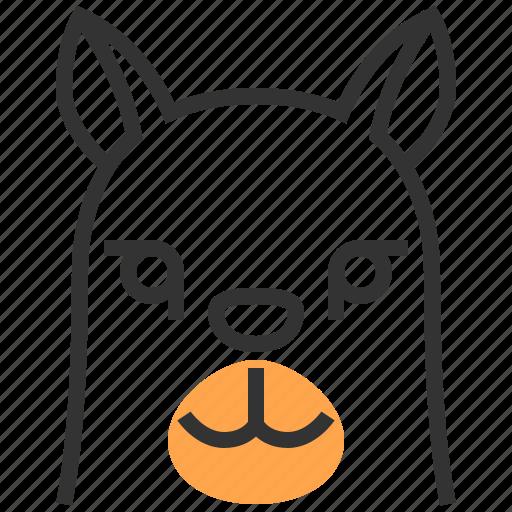 alpaca, animal, face, head, llama icon