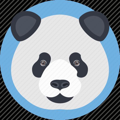 animal face, cartoon panda, panda, panda bear, panda face icon