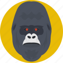 animal, gorilla, gorilla face, gorilla head, monkey icon