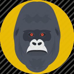 animal, gorilla, gorilla face, gorilla head, monkey icon