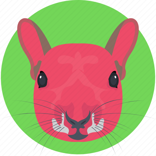 animal, house mouse, mouse, rat, rat face icon