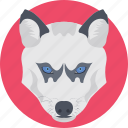 wild animal, wildlife, wolf, wolf face, wolf head icon