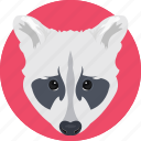 animal, cartoon animal, coyote, fox, fox face icon