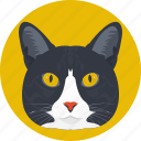 animal, cat, cat face, feline, lynx icon