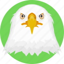 animal, owl, owl face, owl head, snowy owl icon