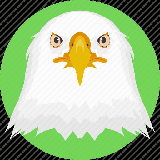 animal, owl, owl face, owl head, snowy owl icon
