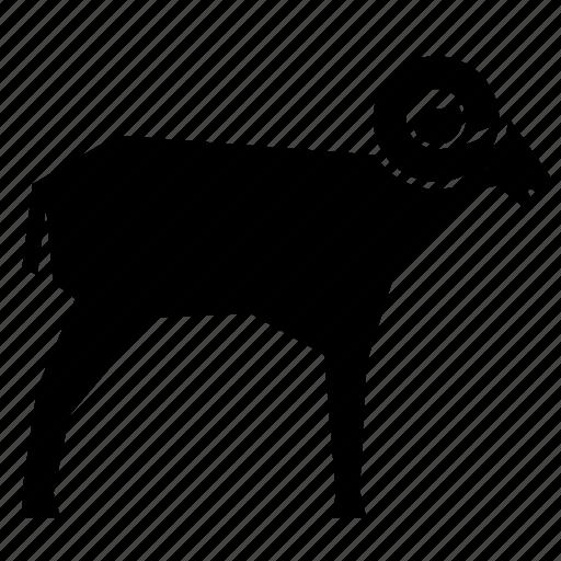 animal, bighorn sheep icon