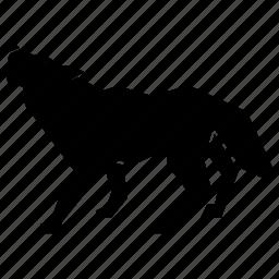 animal, coyote icon