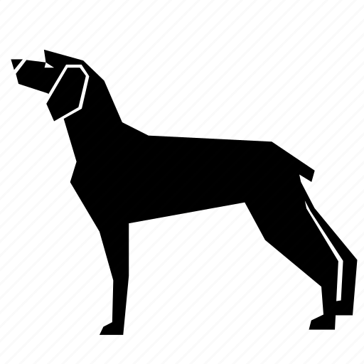 animal, hound icon