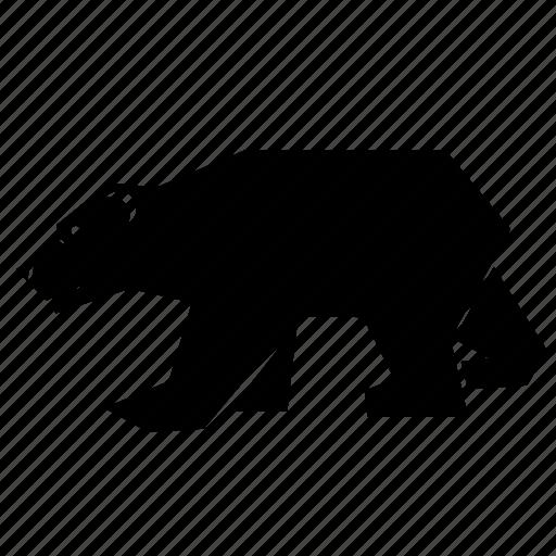 animal, polar bear icon