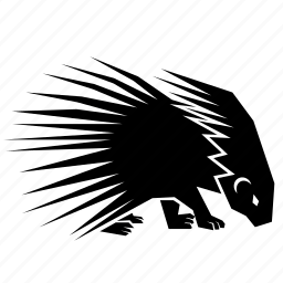 animal, porcupine icon