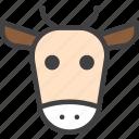 beef, cow, head