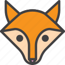 animal, fox, head