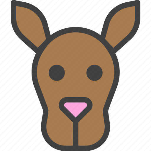 animal, head, kangaroo icon