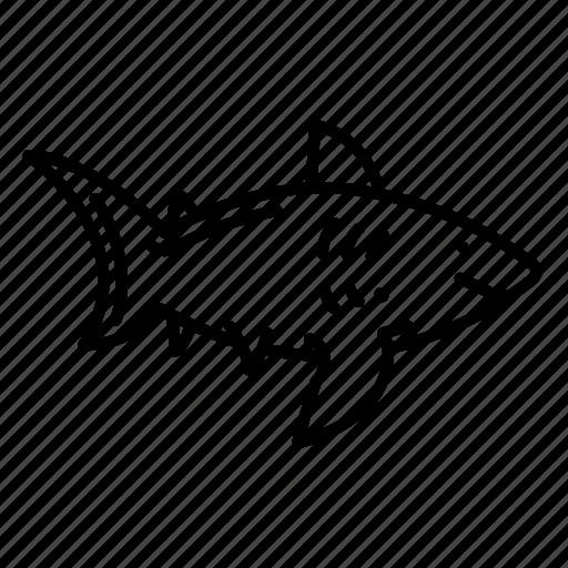 animal, shark, underwater icon