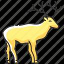 deer, deer icon, reindeer, stag icon