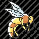 bee, bee icon, honeybee, wasp icon