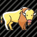 bison, bison icon, buffalo, bull
