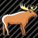 elk, moose, moose icon, wapiti icon