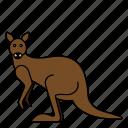 animal, kangaroo, mammals, wild, zoo icon