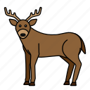 mammals, animal, zoo, wild, deer icon